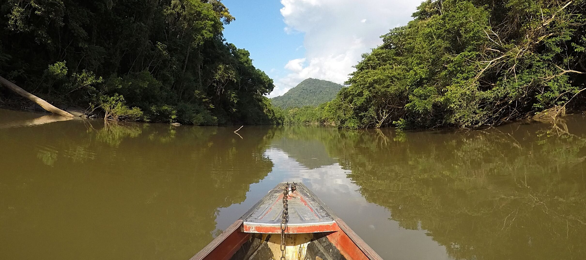 Expédition au Guyana sur le Rupununi