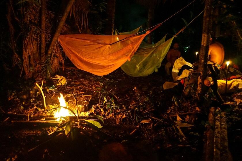 guide accompagne vivouac amazonie