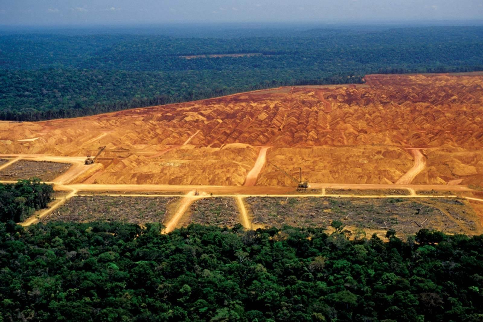 Mines et déforestations
