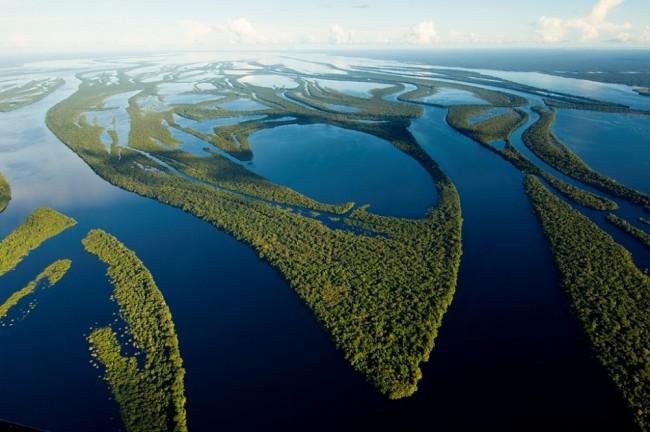 Vue aérienne de l'archipel anavilhanas